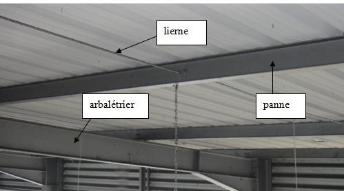 panne pour toiture isolation sous toiture garage. Black Bedroom Furniture Sets. Home Design Ideas